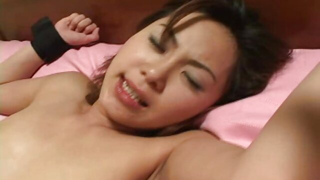 Porno nessuna registrazione  Studente video porno pompini con ingoio lily Ford in palestra con un bel